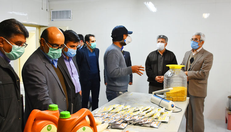 بازدید جناب آقای دکتر رحیمی معاون پژوهش و فناوری وزارت عتف از پردیس نوآوری پارک علم و فناوری خراسان جنوبی
