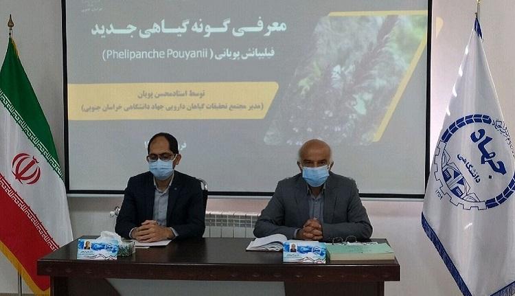 """ثبت گونه گیاهی جدید در خراسان جنوبی با نام جهانی """"فیلیپانش پویانی"""" توسط استاد محسن پویان"""