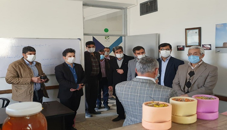 دکتر رحیمی شعرباف، معاون پژوهش و فناوری وزارت علوم، تحقیقات و فناوری از مرکز رشدواحدهای فناور قاین بازدید کرد