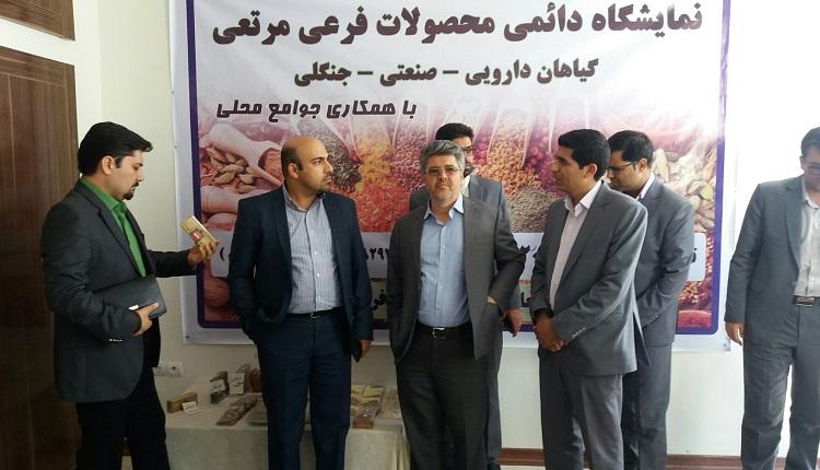 بازدید جناب آقای دکتر زند حسامی مدیر کل محترم دفتر تجاری سازی فناوری معاونت علمی و فناوری ریاست جمهوری