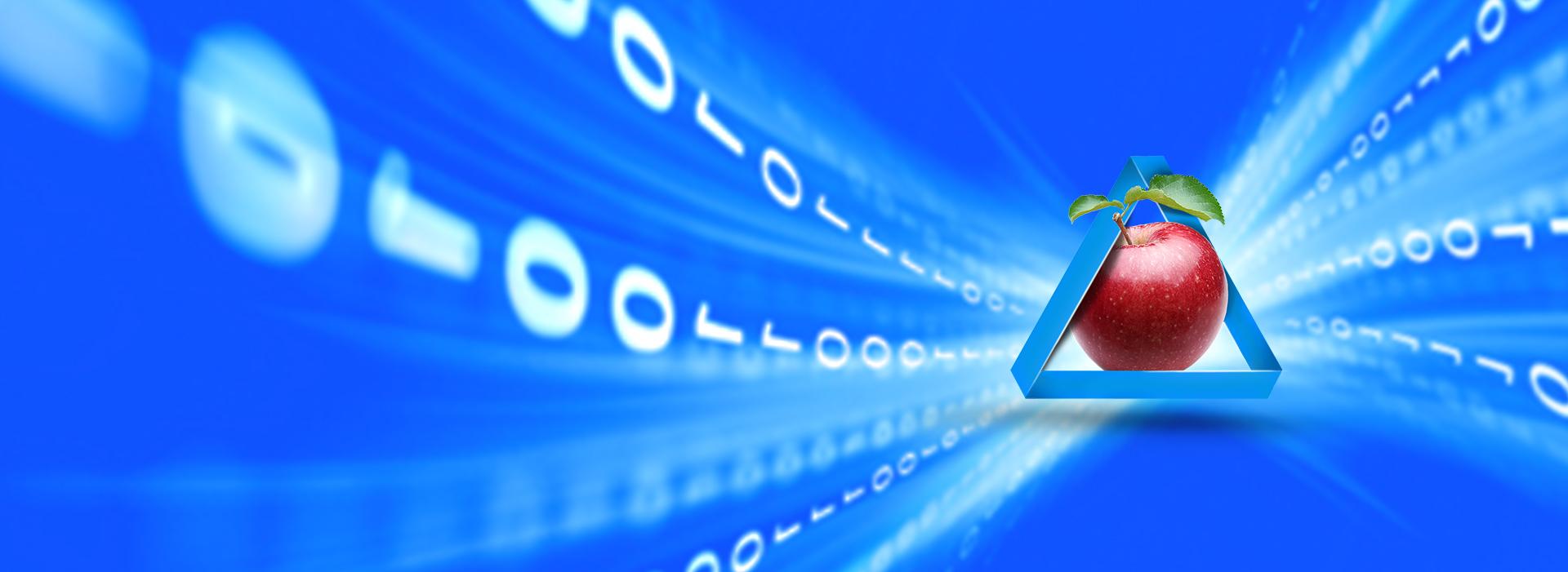 نرم افزار حسابداری کاربران اینترنت