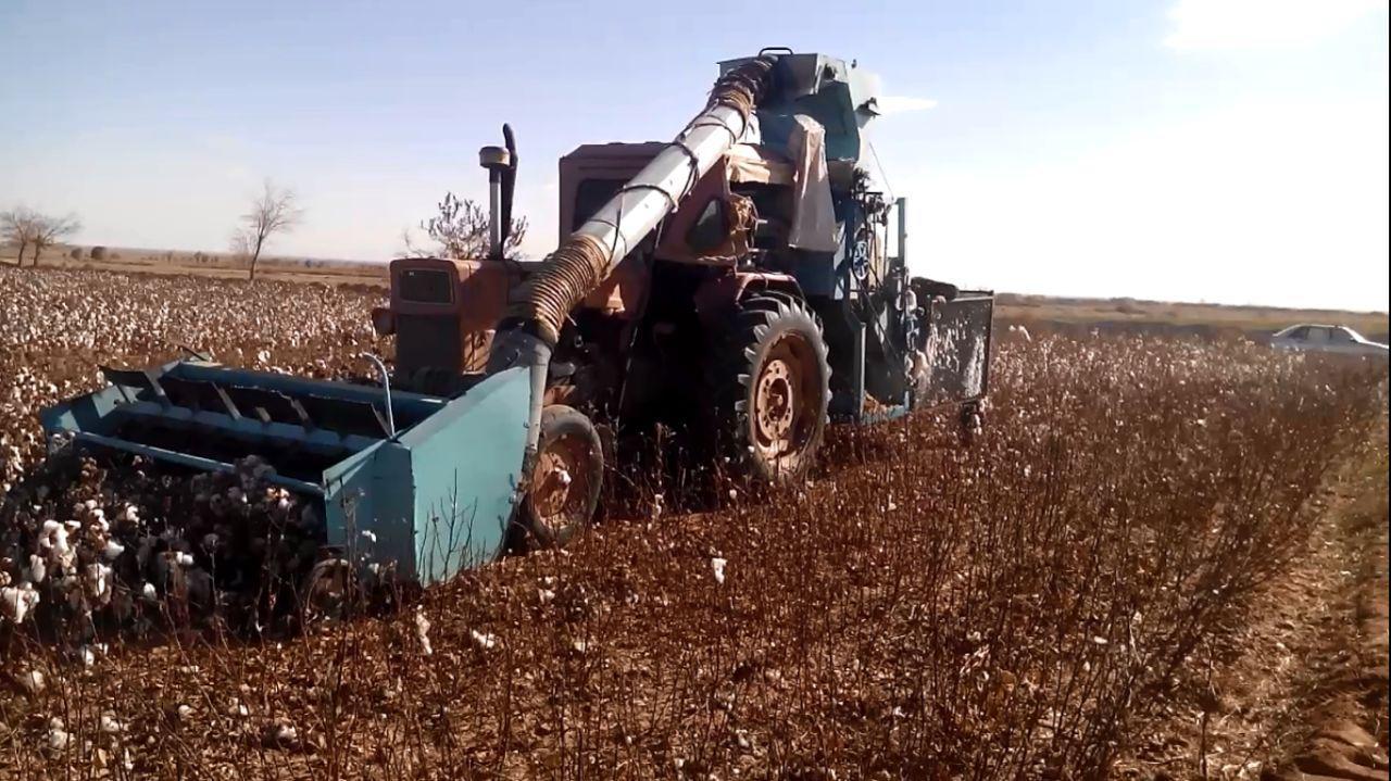 طراحی و ساخت دستگاه غوزه چین پنبه جهت استفاده در مزارع کاشت پنبه
